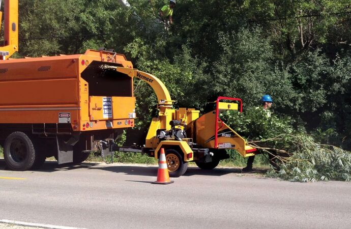 Commercial Tree Services-Chula Vista CA Tree Trimming and Stump Grinding Services-We Offer Tree Trimming Services, Tree Removal, Tree Pruning, Tree Cutting, Residential and Commercial Tree Trimming Services, Storm Damage, Emergency Tree Removal, Land Clearing, Tree Companies, Tree Care Service, Stump Grinding, and we're the Best Tree Trimming Company Near You Guaranteed!