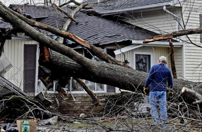 Storm Damage-Chula Vista CA Tree Trimming and Stump Grinding Services-We Offer Tree Trimming Services, Tree Removal, Tree Pruning, Tree Cutting, Residential and Commercial Tree Trimming Services, Storm Damage, Emergency Tree Removal, Land Clearing, Tree Companies, Tree Care Service, Stump Grinding, and we're the Best Tree Trimming Company Near You Guaranteed!
